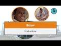 Stukadoor | mbo | Aventus