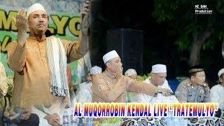 Download Mp3 Live Al Muqorrobin Kendal.live Tratemulyo Weleri