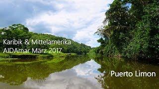 AIDAmar Mittelamerika März 2017 Costa Rica Puerto Limon Canopy GoPro Hero 5