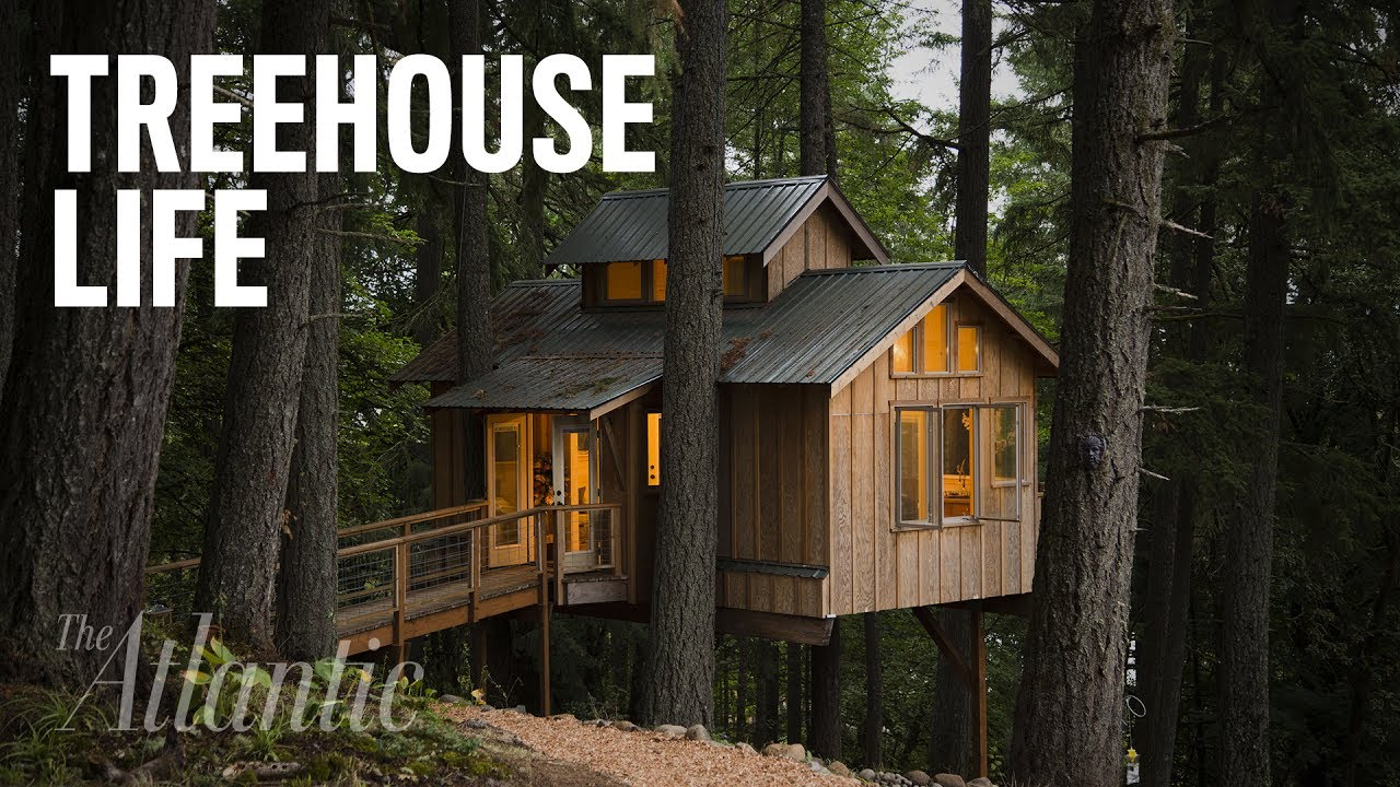 would you live in a treehouse - Treehouse