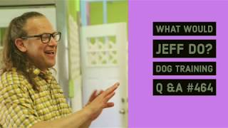 Dog pulls on walks | Stop a dog from howling | What Would Jeff Do? Dog Training Q & A #464