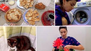 VLOG: Блинный день/ ДР у Коржика / Стирка /Кашпо с цветами / Мама Вика