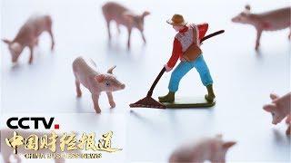 [中国财经报道]关注猪肉供应 自然资源部:允许生猪养殖用地使用一般耕地| CCTV财经
