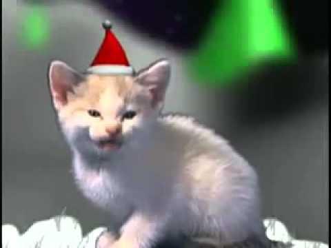 chat qui chante.m4v