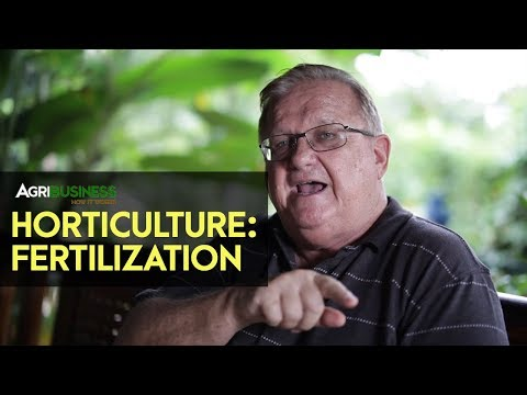 Fertilization: Why Mixing Organic and Inorganic Fertilizer is Recommended