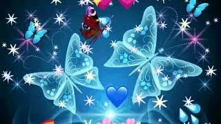 Blue Butterfly gif