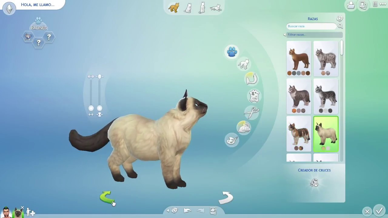 The Sims 4 Dogs And Cats Every Cat Breed On The Game Youtube