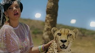 Lily Allen talks about working with a cheetah - The Graham Norton Show: Series 14 Episode 17 - BBC