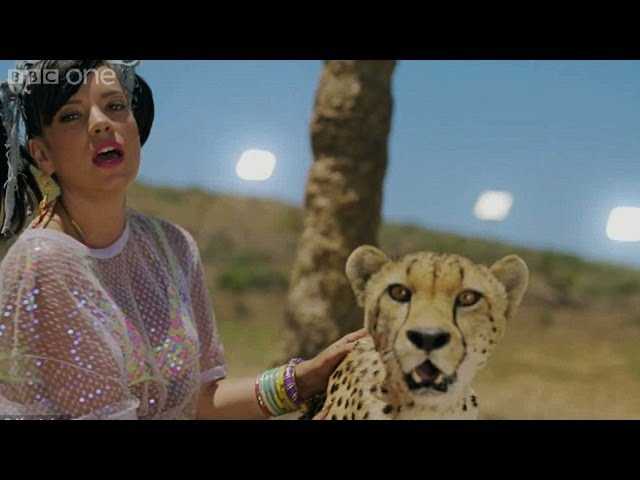 Lily Allen talks about working with a cheetah – The Graham Norton Show: Series 14 Episode 17 – BBC