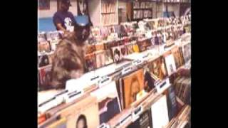 DJ Shadow-Number Song
