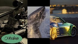 Video Jauz vs. Kidd Towerz vs. JOYRYDE - Violent Shark House (Elayb mashup) download MP3, 3GP, MP4, WEBM, AVI, FLV November 2017