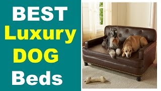 12 Best Luxuary Dog Beds For 2018 ! Best Dog Beds !