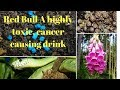 Red Bull A highly toxic, cancer causing drink