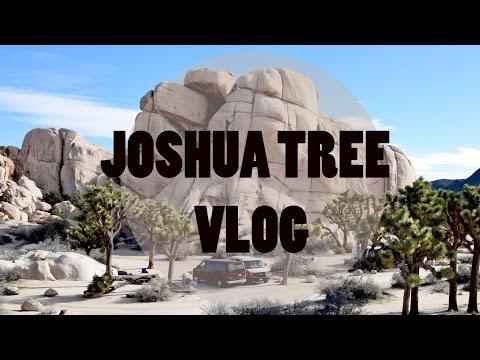 travel-california-||-joshua-tree-national-park-||-Путешествие-по-Калифорнии