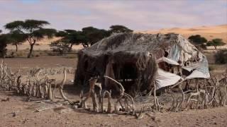 Senegal & Mauritania 2014