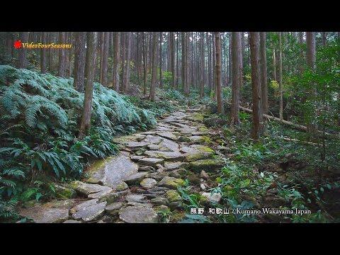 熊野古道と那智大社 by ビデオフォーシーズンズ on <a href=