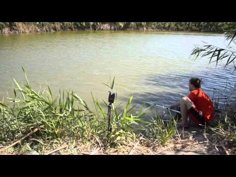рыбалка в ставропольском крае на сома