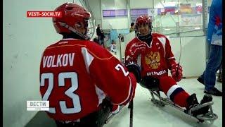 Россия против России: основной состав сборной по следж-хоккею стал ближе к Кубку континента в Сочи