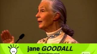 Jane Goodall on Chimpanzee and Human Emotions