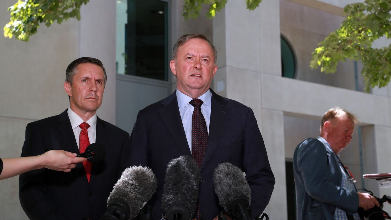 Some Labor MPs are 'desperate' to get Mark Butler out of climate change portfolio