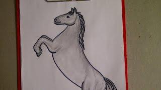 Как нарисовать  лошадь (коня). Уроки рисования для начинающих(Здравствуйте! Предлагаю вашему вниманию видеоролик, где я показываю, как очень просто нарисовать лошадь...., 2015-08-04T06:32:54.000Z)