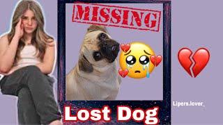 Piper Rockelle's dog is missing + Pavin update