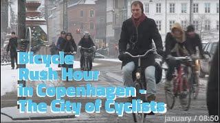 Bicycle Rush Hour in Copenhagen
