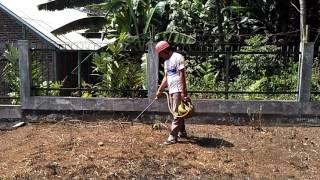 Membasmi rumput kering/basah dengan gas LPG