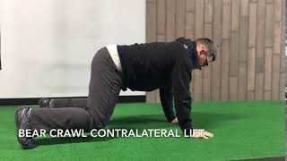 Bear Crawl Contralateral Lift