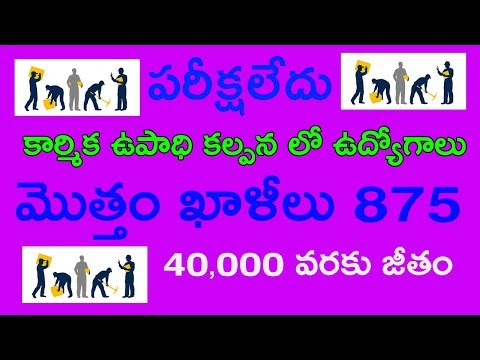 GOVERNMENT OF INDIA MINISTRY OF LABOUR & EMPLOYMENT || Job update in india