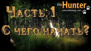The Hunter #1 С чего начать?