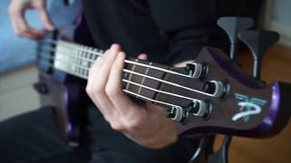 BRING ME THE HORIZON - Avalanche | Bass Cover