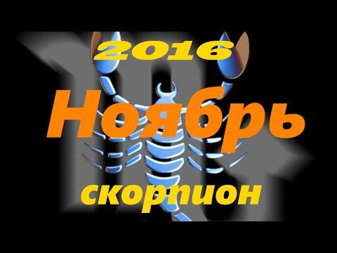 Скорпион. Характеристика знака Зодиака. Общий гороскоп