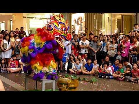 World Dragon & Lion Dance Day 2018 (Malaysia) Unicorn Dance - Chong Hwa 世界龙狮节 (马来西亚站) 中华华中《麒麟表演》