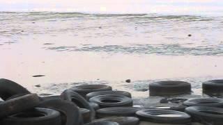 Осторожно Barrracuda Beach Resort! Первая линия!.Белый песок! ОАЭ