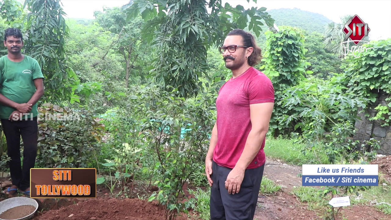 Image result for aamir khan tree