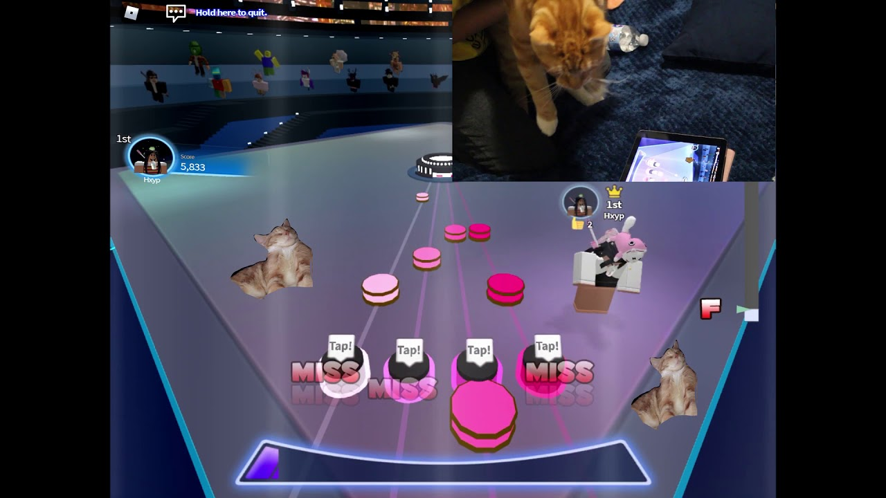 iPad RoBeats - Heads Will Roll but it's played by a cat. F, 6% accuracy. 2 max combo.