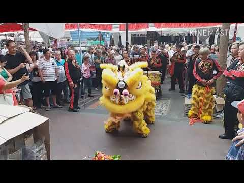 Singapore Hoon Hong Lion Dance on Single Pole and Cai Qing Performances at Bugis on 8/2/19 CNY Day 4
