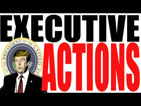 Executive Actions Explained: American Government Review
