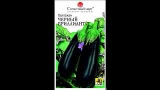 Семена баклажана (синенького) оптом(, 2013-05-04T12:58:03.000Z)
