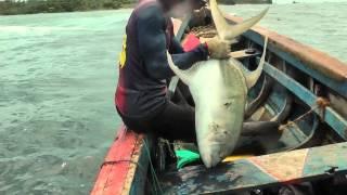 Морская охота - документальный фильм
