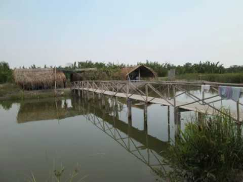 Cải Lương: A Live Recording of Vietnamese Folk Music