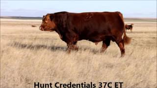 Hunt Credentials 37C ET