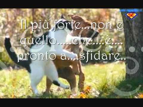 My Way...frank sinatra   Karaoke   (La mia vita!!! in italiano)