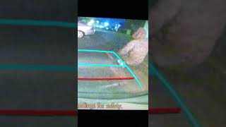 REAR CAR CAM CATCHES MAN....