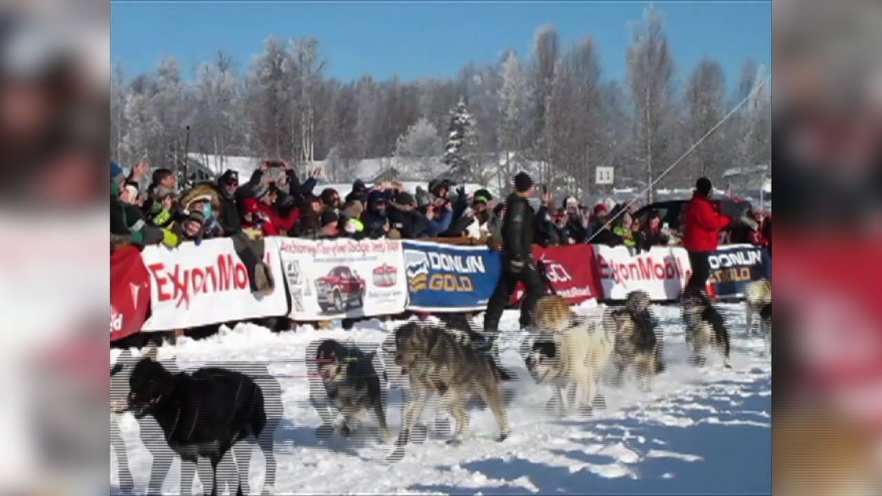 Alaska's Iditarod Trail Sled Dog Race Kicks Off