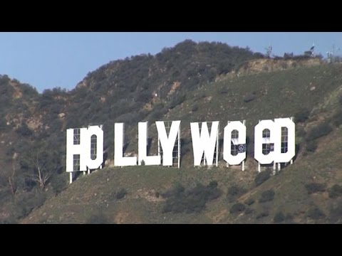 """Hollyweed"" sign a throwback to political activism"