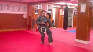 Step by Step: Jyoshinmon Shorin Ryu-Pinan Shodan