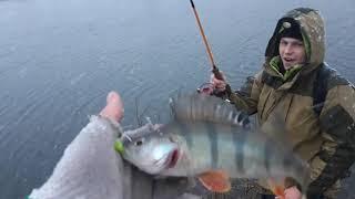 Рыбалка на Окуня и Щуку в декабре на спиннинг Щука Окунь на джиг