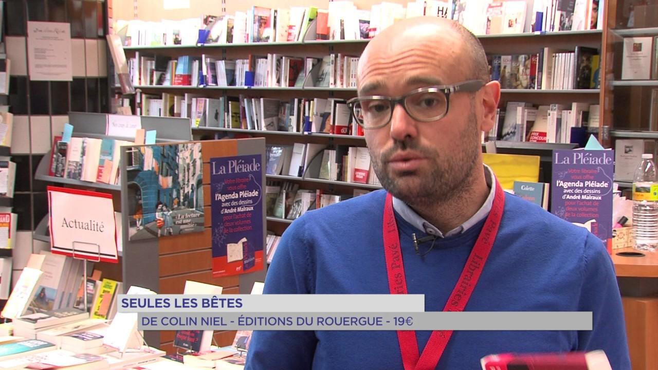 Littérature : les livres 2017 à ne pas manquer